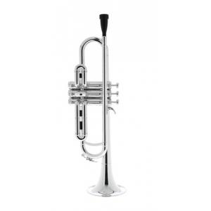 Is Startone PTR-20 Bb- Trumpet Silver a good match for you?