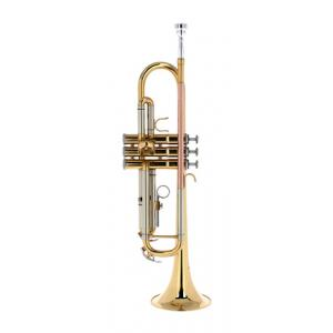 Is Startone STR-25 Bb-Trumpet a good match for you?