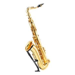 """Take the """"IS IT GOOD FOR ME"""" test for """"Startone STS-75 Tenor Sax"""", read the reviews and join the community!"""