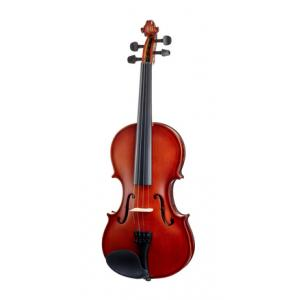 Is Startone Student I Violin Set 4/4 a good match for you?