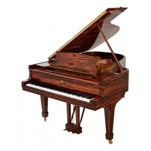 "Take the ""IS IT GOOD FOR ME"" test for ""Steinway & Sons A-188 Makassar"", read the reviews and join the community!"