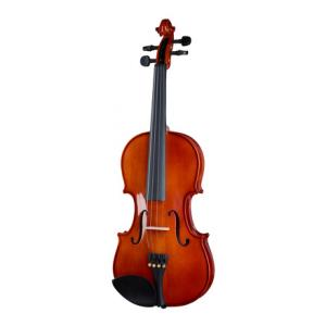 Is Stentor SR1018 Violinset 4/4 a good match for you?
