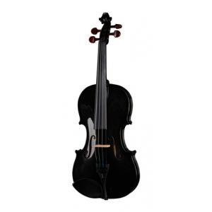 Is Stentor SR1401 Harlequin Violin 4/4 BK a good match for you?