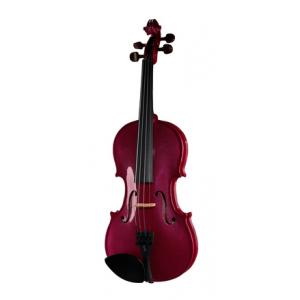 Is Stentor SR1401 Harlequin Violin 4/4 RP a good match for you?