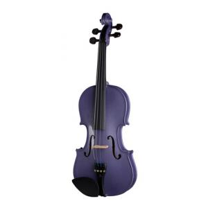 Is Stentor SR1401 Harlequin Violin 4/4 SG a good match for you?