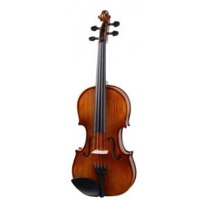Is Stentor SR1542 Violin Graduate 4/4 a good match for you?
