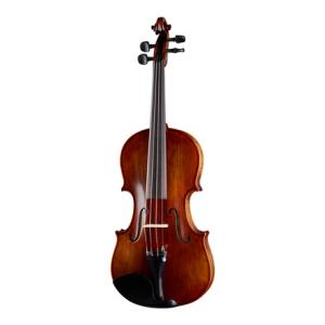 Is Stentor SR1865 Violin Messina 4/4 a good match for you?