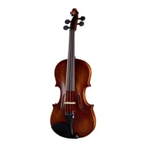 Is Stentor SR1875 Violin Elysia 4/4 a good match for you?