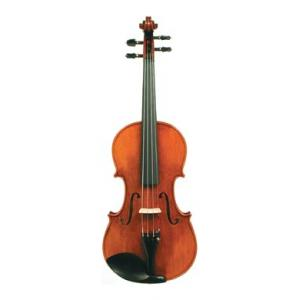 Is Stentor SR1880 Violin Arcadia 4/4 a good match for you?
