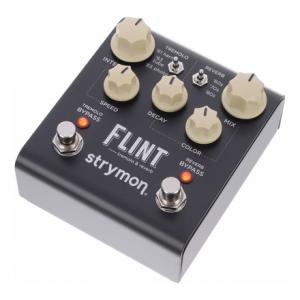 Is Strymon Flint a good match for you?
