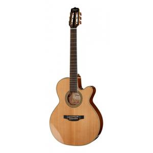 Is Takamine CNC-WS1 a good match for you?