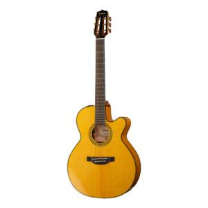 Is Takamine CNC-WS2 a good match for you?
