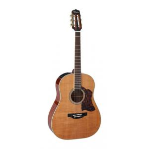 Is Takamine CRN-TS1 a good match for you?