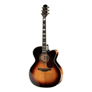 Is Takamine EF250TK Toby Keith a good match for you?