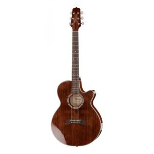 Is Takamine EF261S-AN a good match for you?