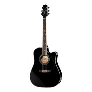 Is Takamine EF341SC the right music gear for you? Find out!