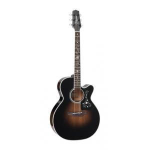 Is Takamine EF450CTTT Bruce Springsteen a good match for you?