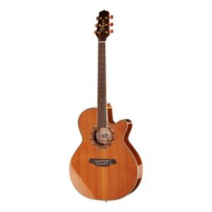 Is Takamine EF508C a good match for you?