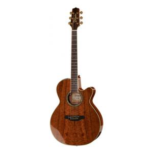 Is Takamine EF508KC a good match for you?