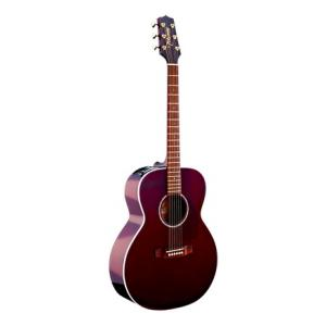 Is Takamine EG430S-WR a good match for you?