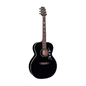 Is Takamine EG451DLX-BLK a good match for you?