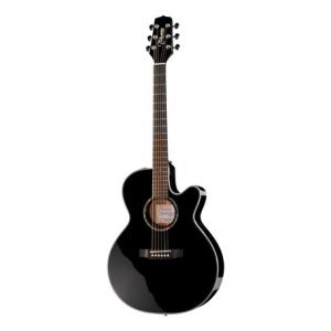 Is Takamine EG541SSC the right music gear for you? Find out!