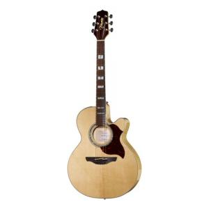 Is Takamine EG543SC the right music gear for you? Find out!