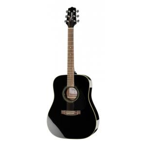 Is Takamine G321 BG a good match for you?
