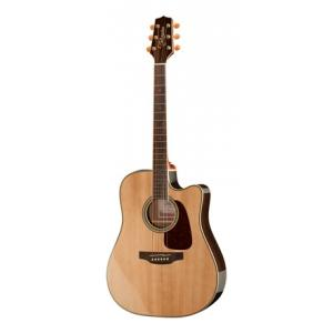 Is Takamine GD71CE-NAT a good match for you?