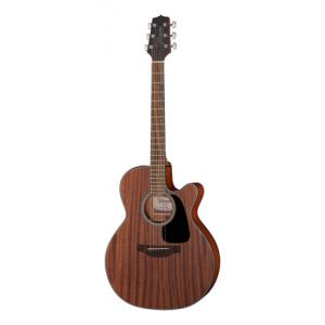 Is Takamine GN11MCE NS G-Series a good match for you?