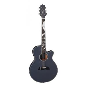 Is Takamine LTD 2019 Moon a good match for you?