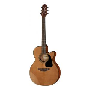 Is Takamine P1NC Pro Series a good match for you?