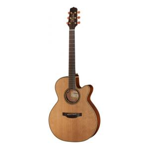 Is Takamine P3NC Pro Serie a good match for you?
