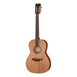 Is Takamine P3NY a good match for you?