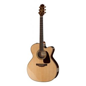 Is Takamine P5JC a good match for you?