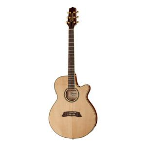 Is Takamine TSP138CN Thinline a good match for you?