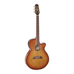 Is Takamine TSP138CTB Thinline a good match for you?