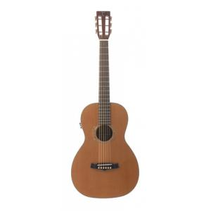 "Take the ""IS IT GOOD FOR ME"" test for ""Tanglewood TW73WNE"", read the reviews and join the community!"