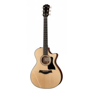 Is Taylor 312ce a good match for you?