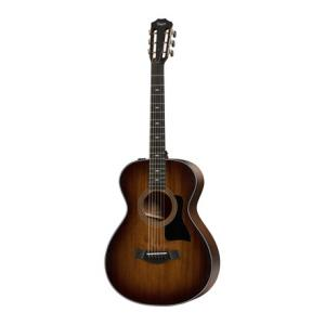 Is Taylor 322e-12Fret-V-Class a good match for you?