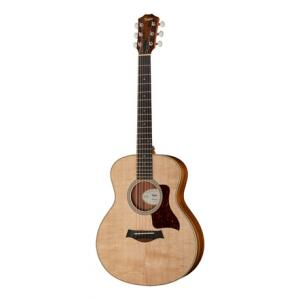 Is Taylor GS Mini-e LTD Ovangkol a good match for you?