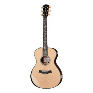 """Take the """"IS IT GOOD FOR ME"""" test for """"Taylor PS12e"""", read the reviews and join the community!"""