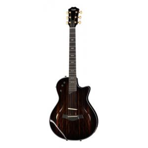 """Take the """"IS IT GOOD FOR ME"""" test for """"Taylor T5z Custom Makassar LTD"""", read the reviews and join the community!"""