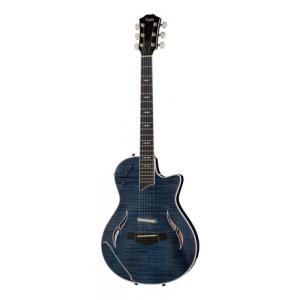 """Take the """"IS IT GOOD FOR ME"""" test for """"Taylor T5z Pro Pacific Blue"""", read the reviews and join the community!"""
