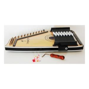 Is Tenayo AHP-3E Country Harp Autoharp a good match for you?