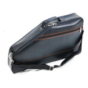 Is Tenayo Autoharp Gig Bag a good match for you?