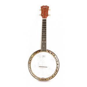 Is Tenayo Ukulelen Banjo Advanced a good match for you?