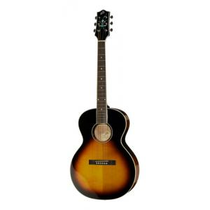 Is The Loar LH-200 SN B-Stock a good match for you?