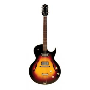 Is The Loar LH-304T CVS Thinbody A B-Stock a good match for you?