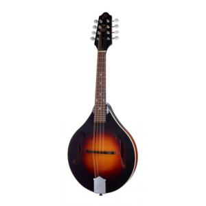 Is The Loar LM-170-VSM a good match for you?